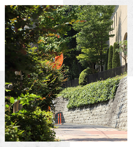 東京建物、都心の低層マンションを建て替え―円滑化法で地上3階建て・38戸に再生