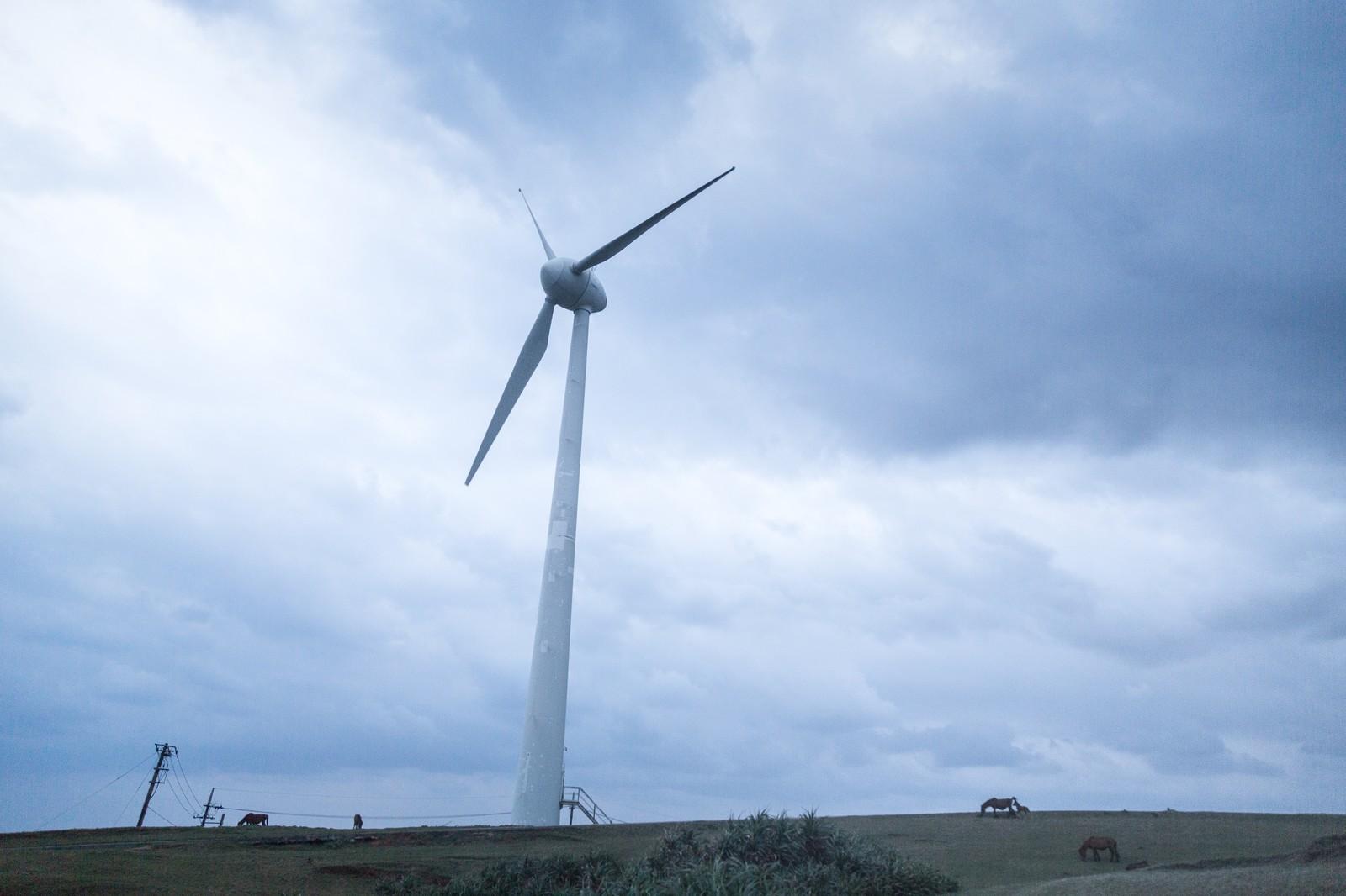 再エネ市場に投資資金が向かう―牽引する太陽光と洋上風力の足元と今後(上)