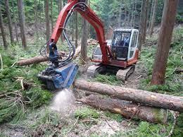 国産木材の利用拡大と環境貢献を両立―日本木造分譲住宅協会、菊谷憲太郎氏(三栄建築設計)に聞く